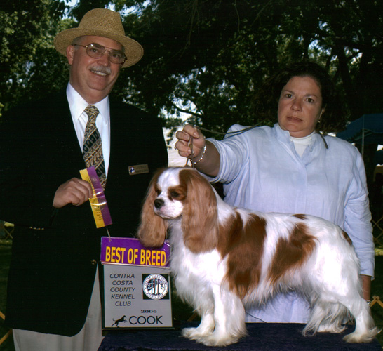 Robbie at the Contra Costa County Kennel Club Dog Show